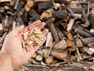 wood-pellets-hand_87414-2135